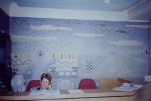 1960s naive mosaic in College entrance hall