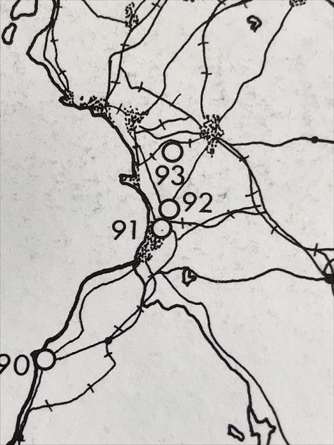 wagtail map